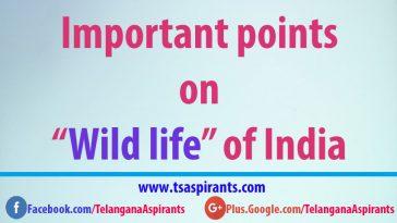 wild life of india