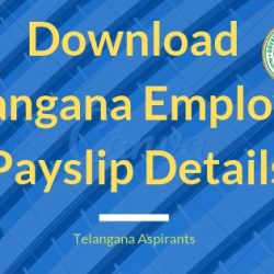 Download TS Employee Payslip Details | TS Salary Slips Excel Format