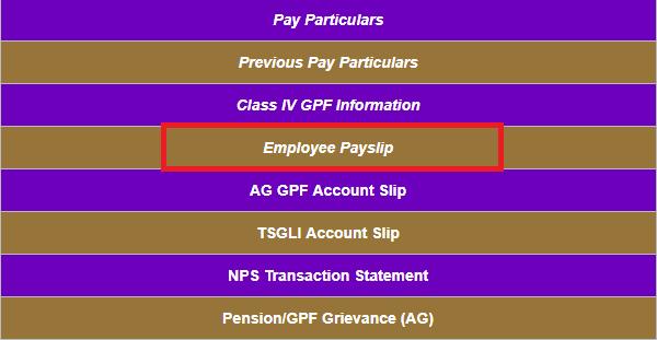 employee payslips details online